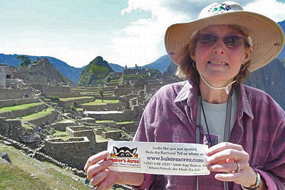 Bumper Sticker Fun Macchu Picchu